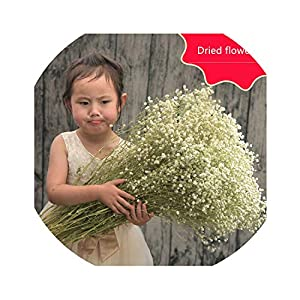 Big Bunch of Stars mantianxing Dried Flowers Gypsophila Bouquets Home Garden Christmas Decor Real Flowers 52