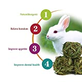 Bunny Chew Toys for Grinding Teeth,Natural Bunny