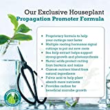 Houseplant Propagation Promoter & Rooting