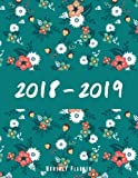 2018-2019 Monthly Planner: Two year monthly planner, Monthly Schedule Organizer - Agenda Planner For 2Years, 24 Months Calendar, Appointment Notebook (2018-2019 two year planner) (Volume 4)