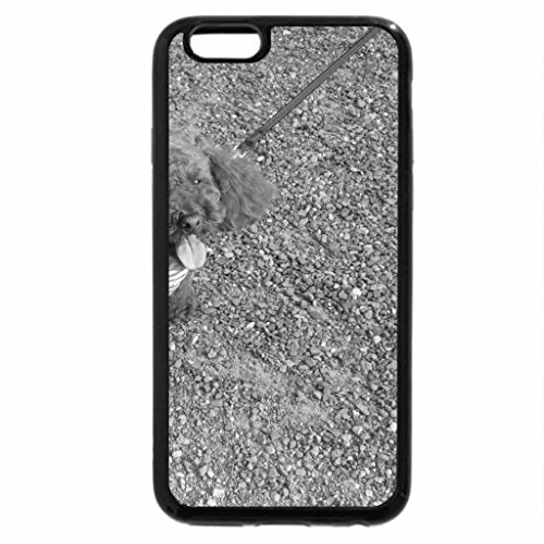 iPhone 6S Plus Case, iPhone 6 Plus Case (Black & White) - Red poodle