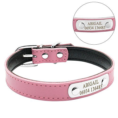 Didog Cute Leather Padded Custom Dog Collar with Engraved Nameplate ID Tag,Fit Cats and Small Medium Dogs,Pink,S Size ()