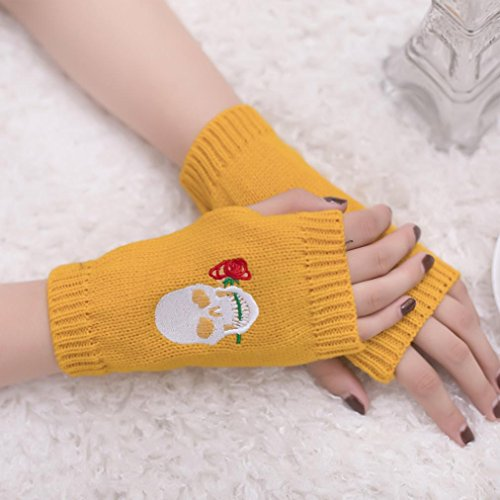 原点ホバー暖かくGoenn ニット アーム ウォーマー 指なし手袋 ロング レディース 刺繍 面白い 防寒 暖かい ニット シンプル ミトン手袋 女用 ケーブル