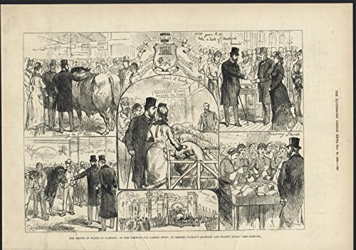 - Prince of Wales Norfolk Fat Cattle Show 1880 antique engraved print