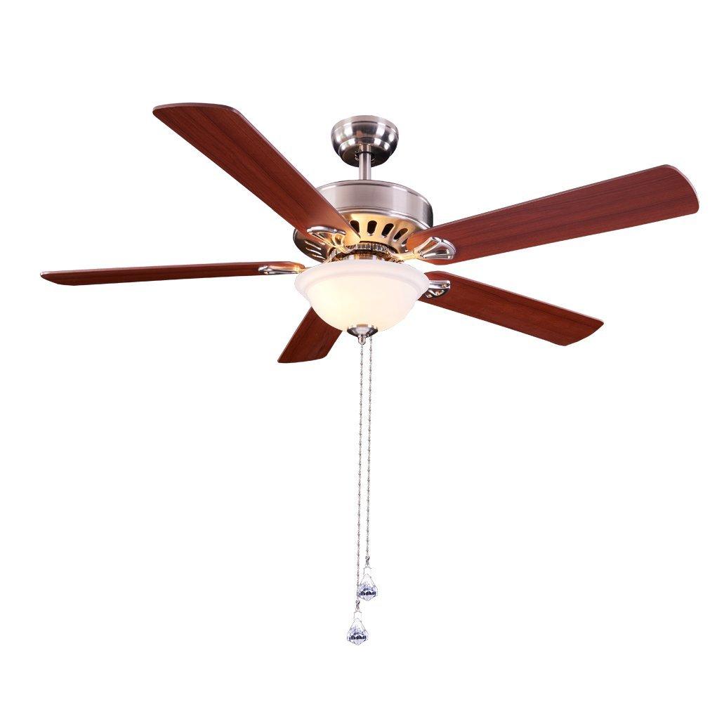 RainierLight Modern Ceiling Fan 52Inch 5 Blades LED Light for Indoor