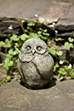 Cheap Campania International A-346-AS Baby Barn Owl Statue, Alpine Stone Finish