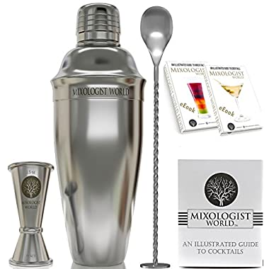 Professional SST Cocktail Shaker SET Bundle w/ Jigger and Recipes / Bartender T