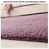 Area Rug Soft Touch & Non Slip Modern Shaggy Carpet for Living Room Bedroom Kids (Silver Purple, 3x4 ft (120x 80cm))