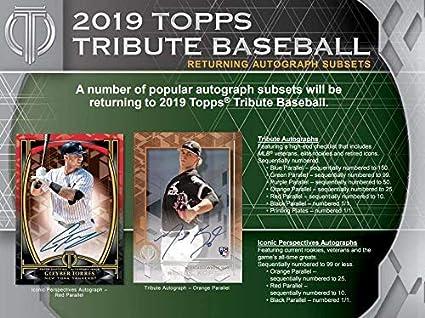 Amazon com: 2019 Topps Tribute Baseball Hobby Box (6 Packs/3