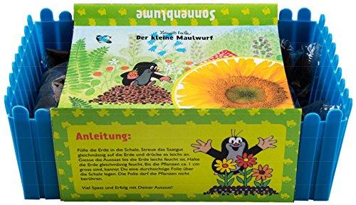 Mein Minigarten Der kleine Maulwurf - Sonnenblume Green