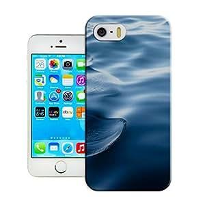 LarryToliver Customizable Seaside landscape iphone 5/5s Case High Quality case