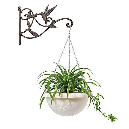 Buy outdoor iron plant hangers