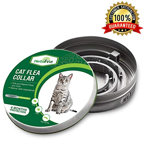 HerbalVet Cat Flea Collar for Flea and Tick Treatment and Prevention | Premium Version, Collars Work for Cats and Kittens, Prevents Reinfection | Helpful E-Book Included