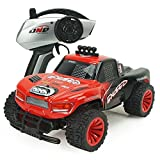 POBO RC Car 1/16 Off-Road Rock Climber 2WD Truck 2.4GHz Remote Control Racing Buggy EP with Light