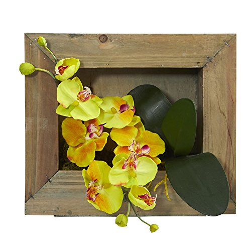 (Nearly Natural Phalaenopsis Orchid Artificial Arrangement in Wooden Picture Frame)