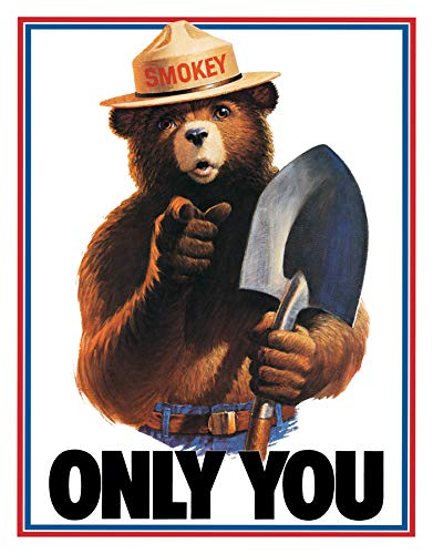 (Desperate Enterprises Smokey Bear Only You Tin Sign, 11.5