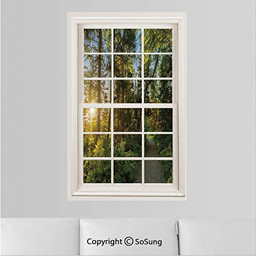 Landscape Removable Wall Sticker/Wall Mural,National Park in Cape Breton Highlands Canada Forest Path Trees Tranquility Photo Creative Window View design Wall Decor,19.6
