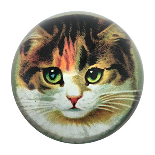 Victorian Tabby Cat Glass Dome Paperweight 3 Diameter