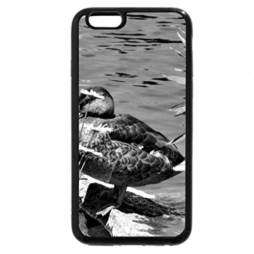 iPhone 6S Plus Case, iPhone 6 Plus Case (Black & White) - among the weeds