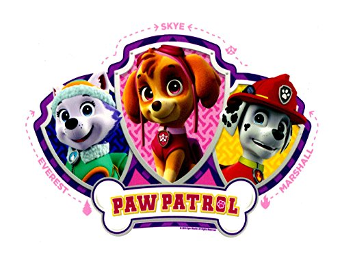 License Trim Area (Paw Patrol Skye, Everest and Mars Licensed Edible Cake Topper by Whimsical Practicality)