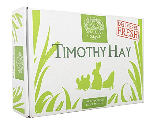 Small Pet Select 2nd Cutting Timothy Hay Pet Food,