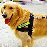 Larger Dog Harness,HYSJY Reflective Dog Harness Padded Dog Harness ,0.99inch Wide High quality Nylon Leash Harness Fit Neck Size30-33inch Dog-Lifetime Guarantee(Black)
