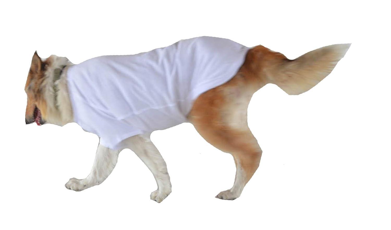 longlongpet Camiseta, camiseta para mascotas, ropa de perro, en blanco, para perros pequeños, medianos y grandes, disfraz de verano,…