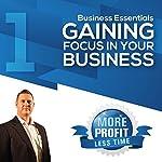 Gaining Focus in Your Business: The Business Essentials Series | John L Millar