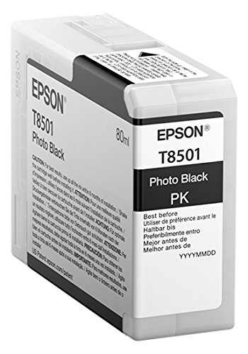 Epson T850100 T850 UltraChrome HD Photo black Ink