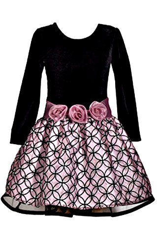 Bonnie Jean Girls Adorable Velvet Rose Drop Waist Flower Dress (8)