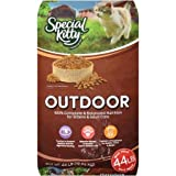 Special Kitty 44 Lbs Outdoor Dry Cat Food for Energetic Active Adult Cats/Support Healthy Bones/Teeth/Vitamins for Eye Health/Wholesome Ingredients/Nutritious Premium Product to Crave/High Quality