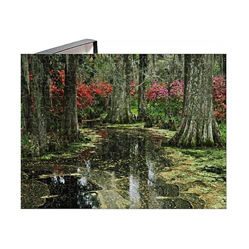 Media Storehouse 252 Piece Puzzle of USA, South Carolina, Charleston, View of Azaleas and Cypresses (11164782)