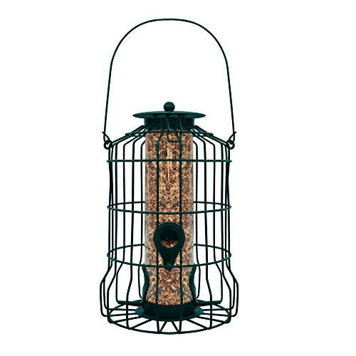Gray Bunny GB-6860 Caged Tube Feeder, Squirrel Proof Wild Bird Feeder, Outdoor Birdfeeder with Large Metal Seed Guard Deterrent for Large Birds ()