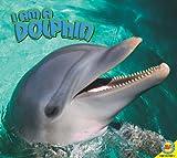 Dolphin, Steve Macleod, 1616907614