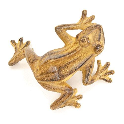 Tawny Jumping Frog