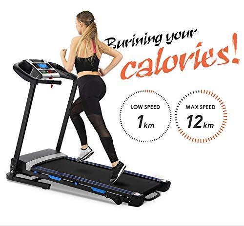 Treadmill Belt Crease In The Middle: Rhomtree Folding Treadmill Motorized Running Jogging