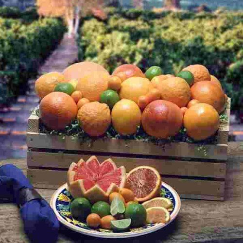 California Citrus Crate