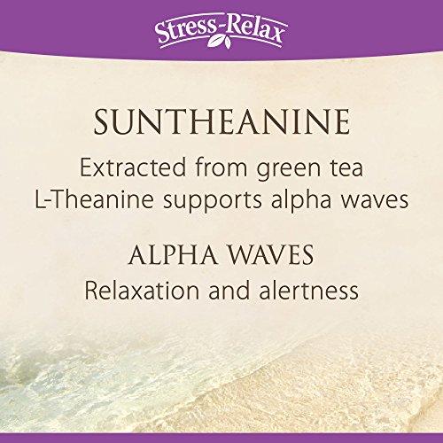 Natural Factors - Stress-Relax Suntheanine L-Theanine, 100mg, 120 Chewable Tablets by Natural Factors (Image #4)
