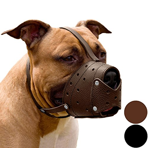 - CollarDirect Pit Bull PitBull Terrier Secure Basket Dog Muzzle Genuine Leather Staffordshire Terrier (Brown)