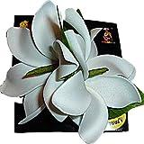 Hawaiian Tahitian White Double Tiare Flower Kolohe Foam Hair Clip -Made in Hawaii