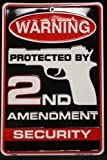 Tag City Novelty SP80063 Warning Protected By 2nd Amendment Security Metal Sign, (8 X 12 Inches)
