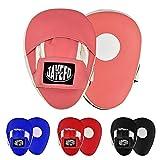 Jayefo Punching Mitts