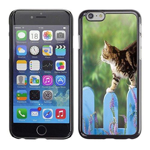 TopCaseStore / caoutchouc Hard Case Housse de protection la Peau - Cat Fence Cute Pet Nature Home Green - Apple iPhone 6 Plus 5.5
