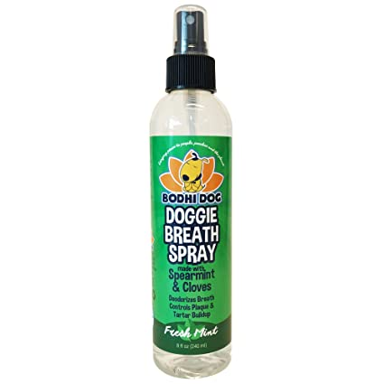 Bodhi Dog Large Natural Dog Breath Freshener for Dogs Teeth and Healthy Gums | Best for