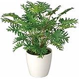 光触媒 人工観葉植物 光の楽園 スプリット 241A50