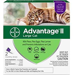 Advantage II Flea Control Large Cat (for Cats Over 9 lbs.) –...