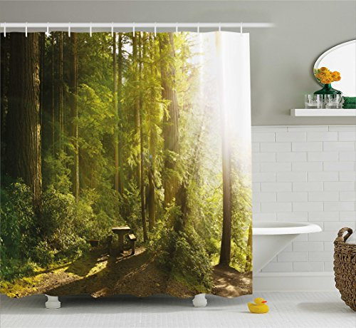 Ambesonne Nature Shower Curtain, Sunny Rainforest with Wood Bench in Olympic National Park Washington USA Photo, Fabric Bathroom Decor Set with Hooks, 84 Inches Extra Long, Green (Olympic National Park Pictures)
