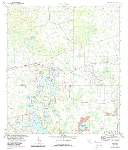 Odessa FL topo map, 1:24000 scale, 7.5 X 7.5 Minute, Historical, 1974, updated 1988, 26.8 x 23 IN - Paper