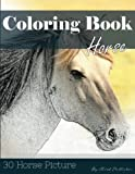 img - for Horse 30 Pictures, Sketch Grey Scale Coloring Book for Kids Adults and Grown Ups: Color me Coloring Book for Mindfulness and Stress Relief Relaxation (Volume 7) book / textbook / text book
