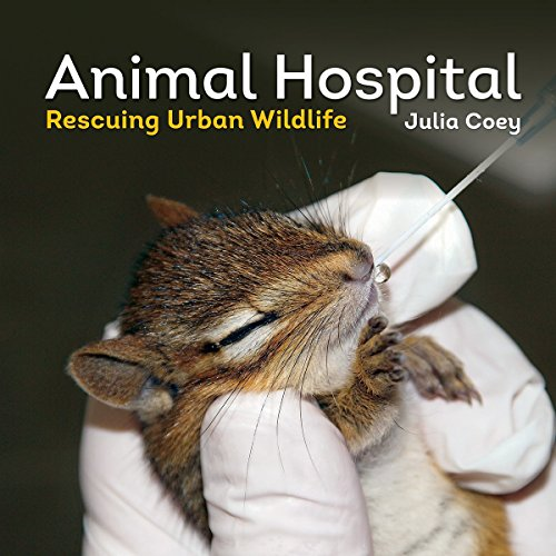 (Animal Hospital: Rescuing Urban Wildlife)